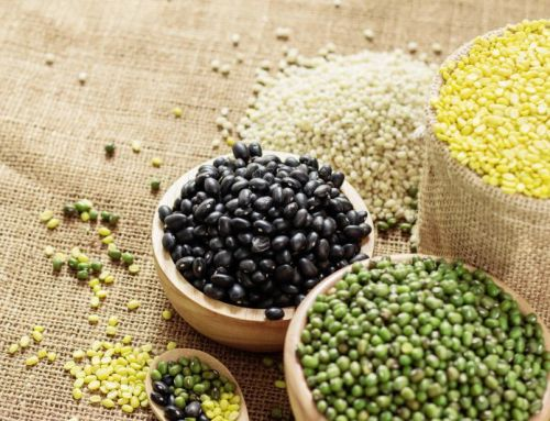 Beans, the Powerful plant protein (plus cooking tips!)